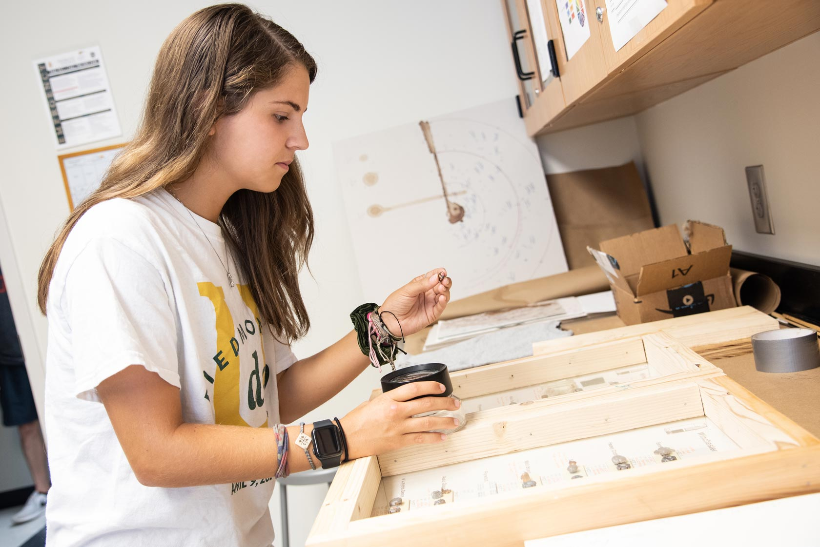 student reviewing ballistics for criminal justice degree